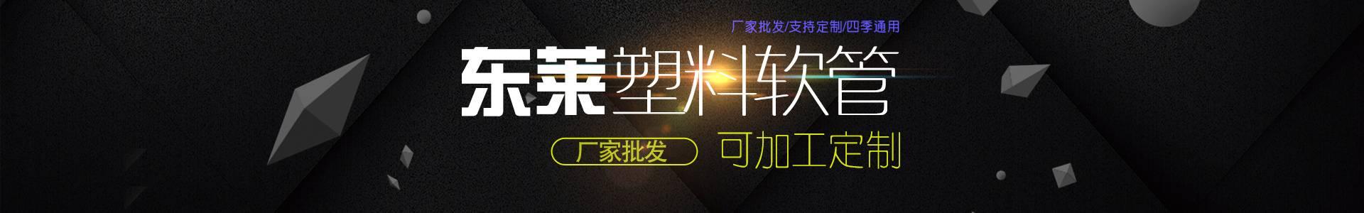 江苏东莱管业有限公司